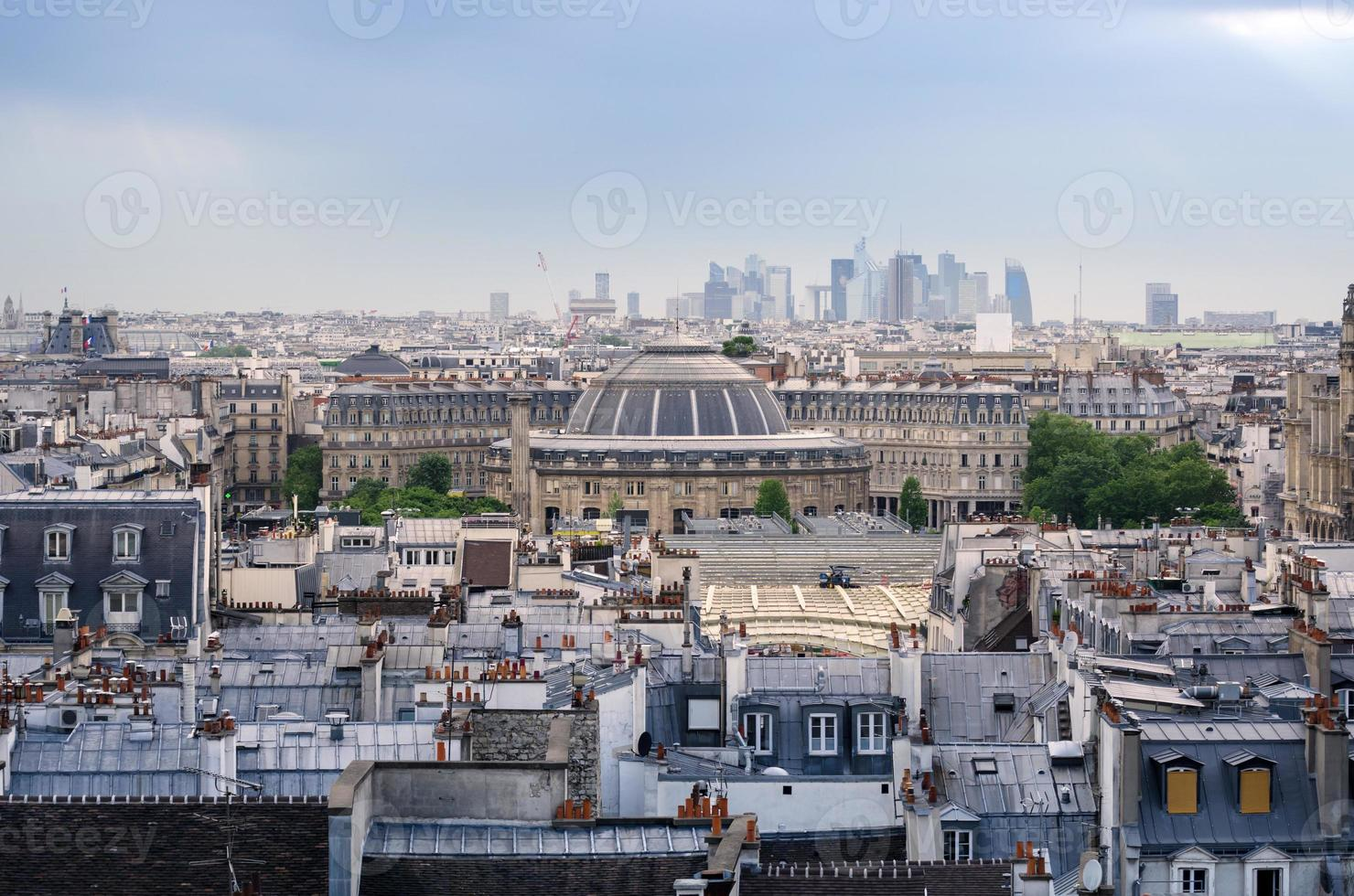 Jardin Nelson Mandela Covered Market with Paris Skyline photo