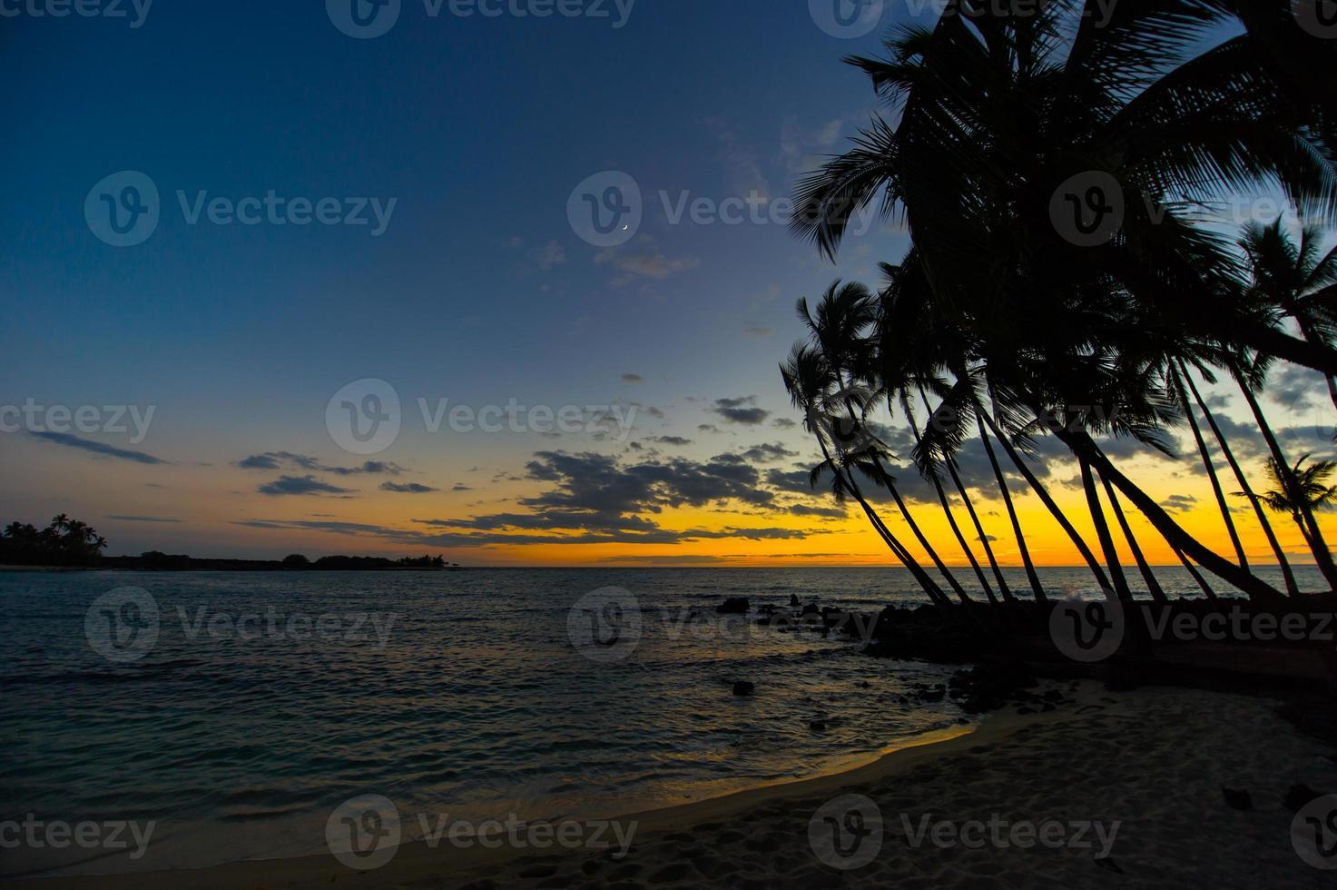 puesta de sol hawaiana con siluetas de palmeras tropicales foto