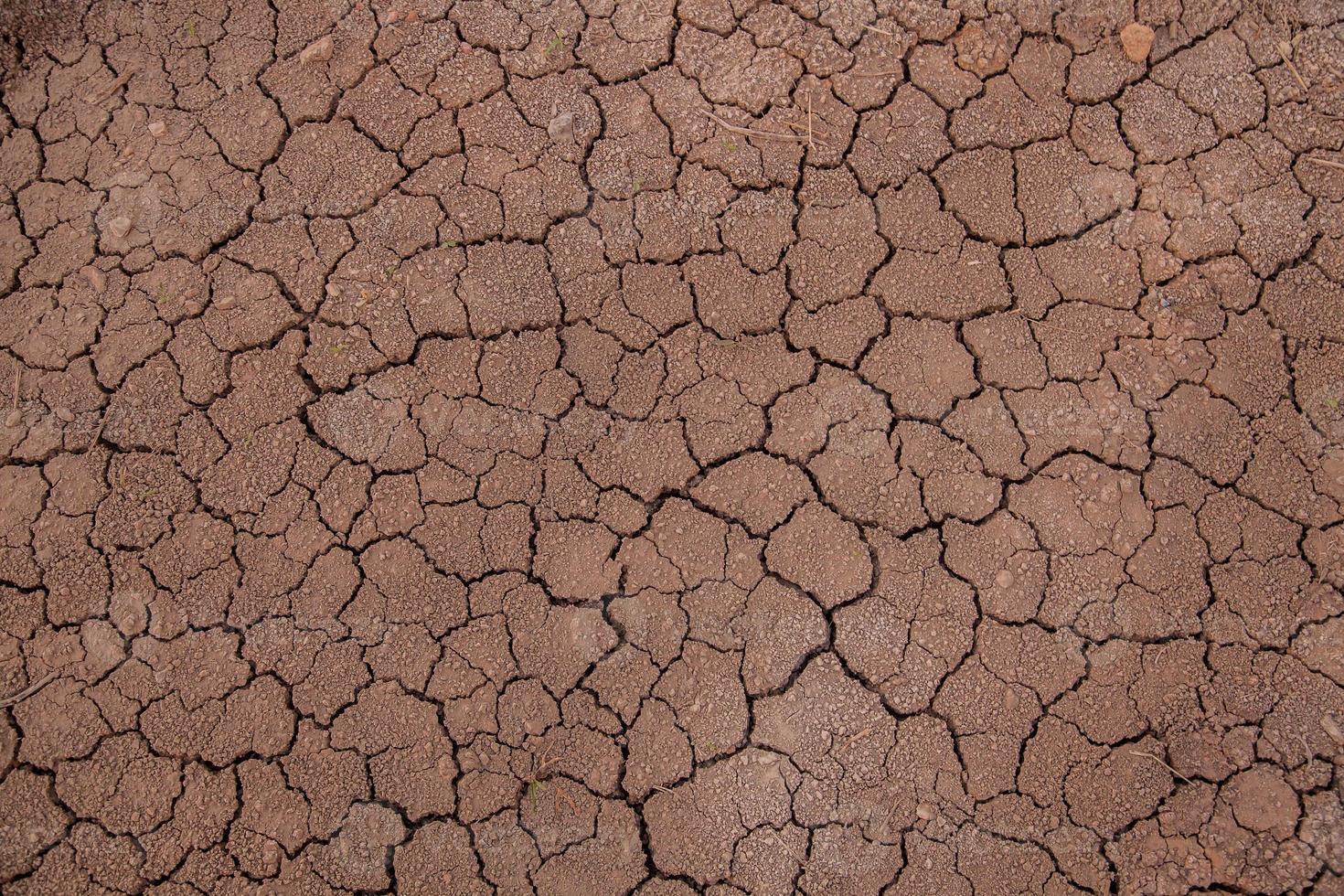 cracked earth photo
