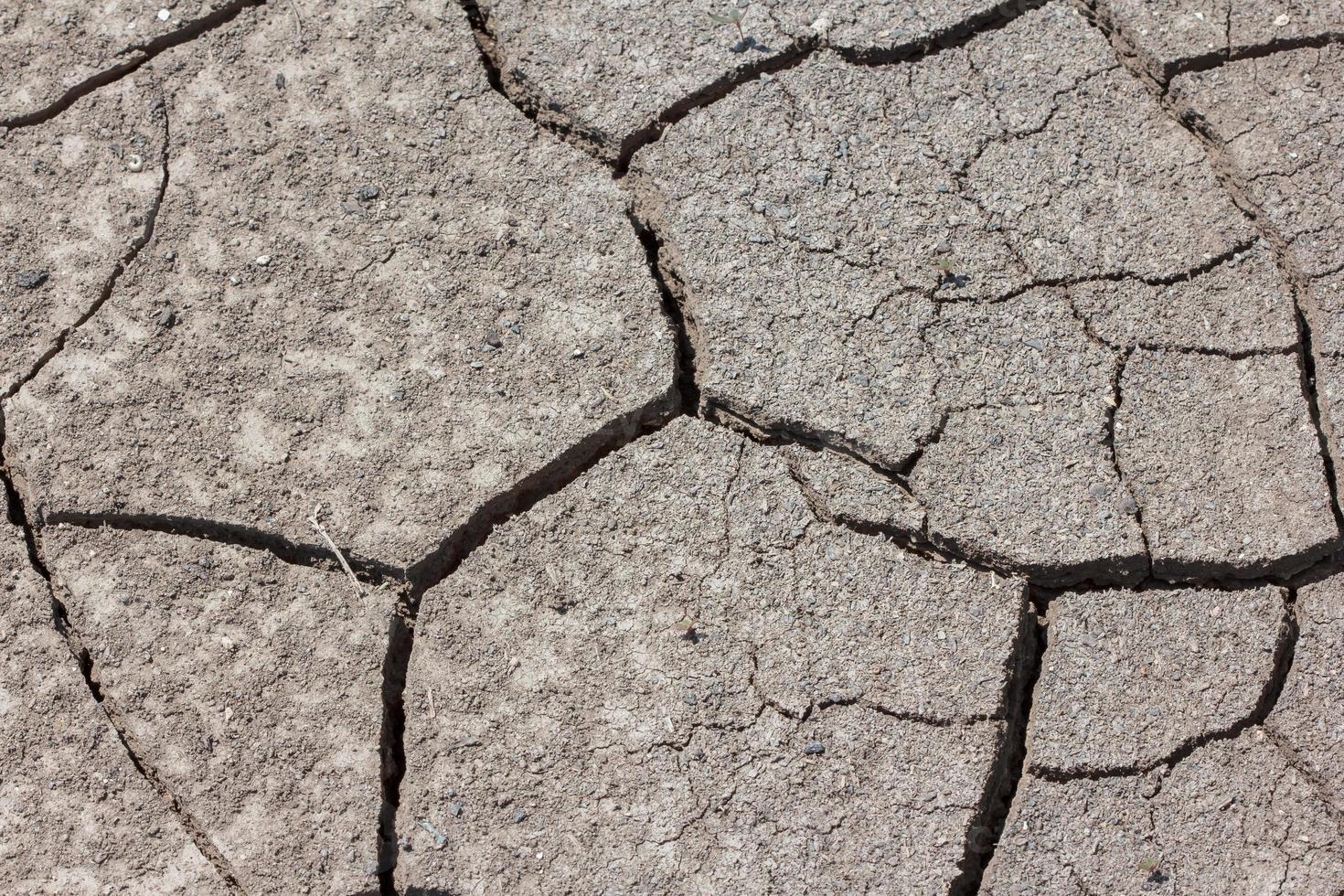 tierra seca y agrietada foto