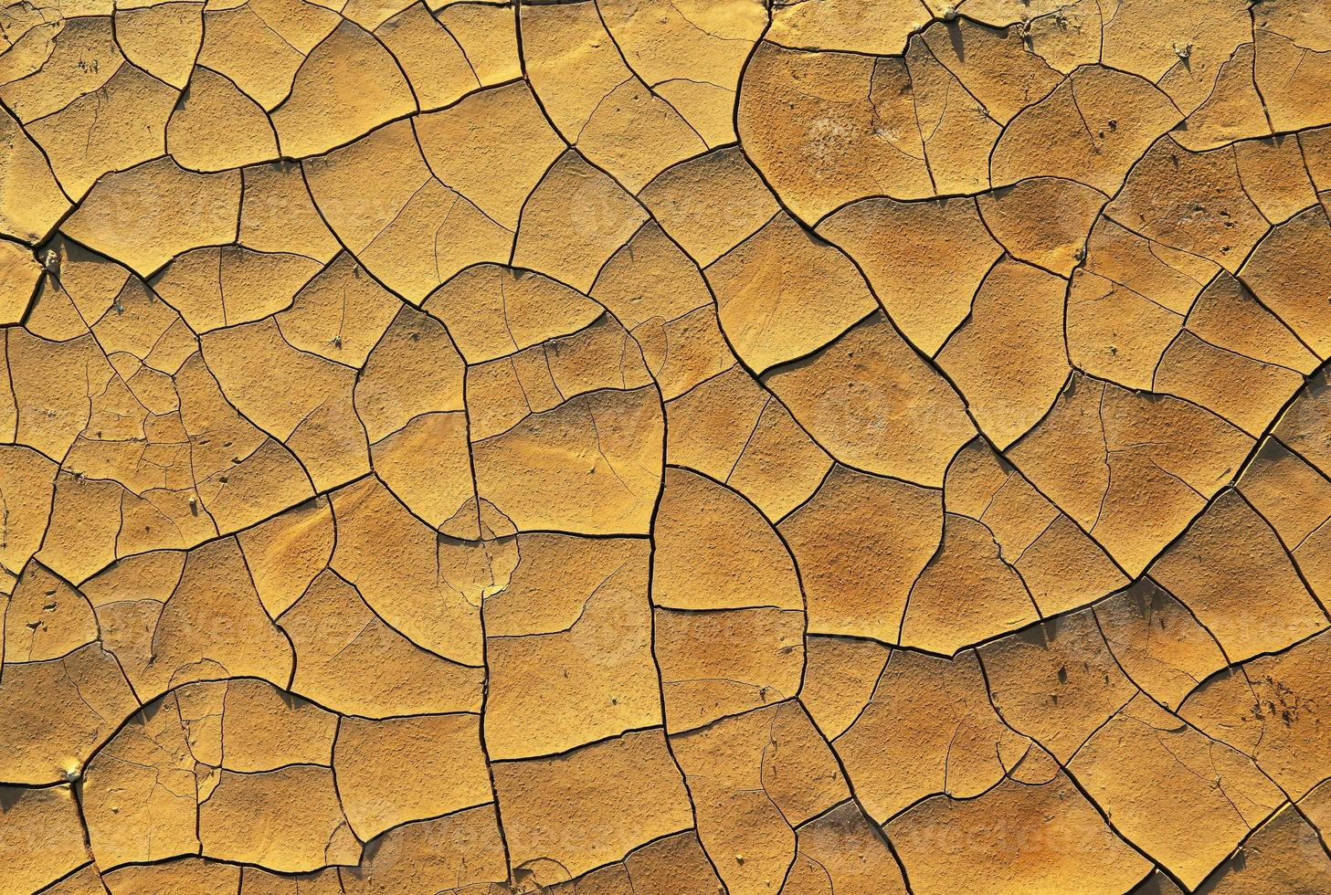 Dry cracked earth photo