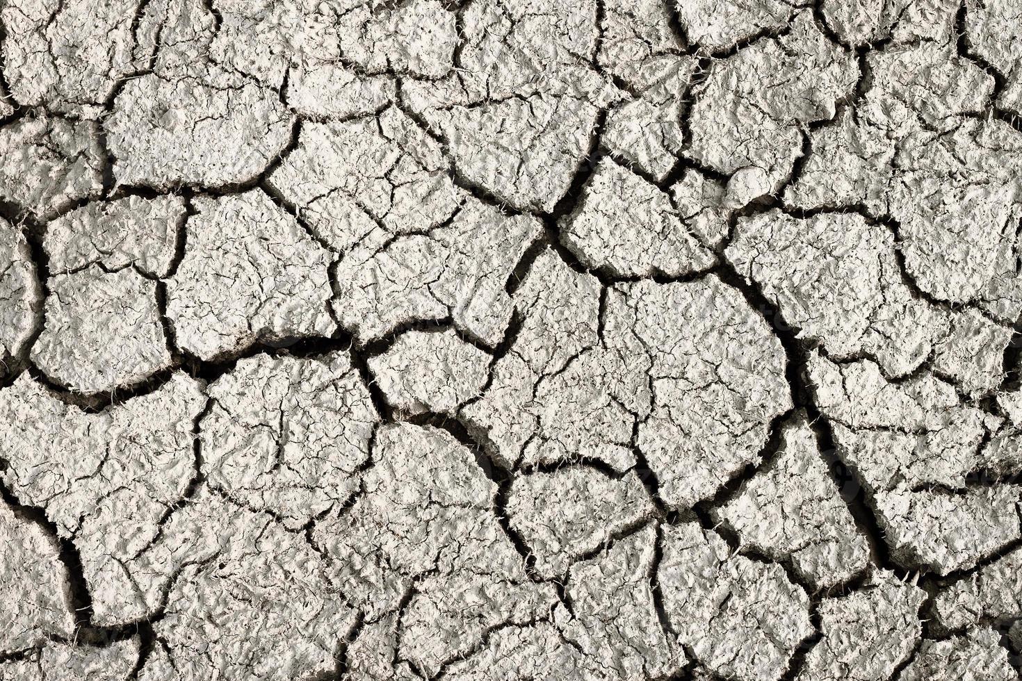 Cracks in dry earth photo