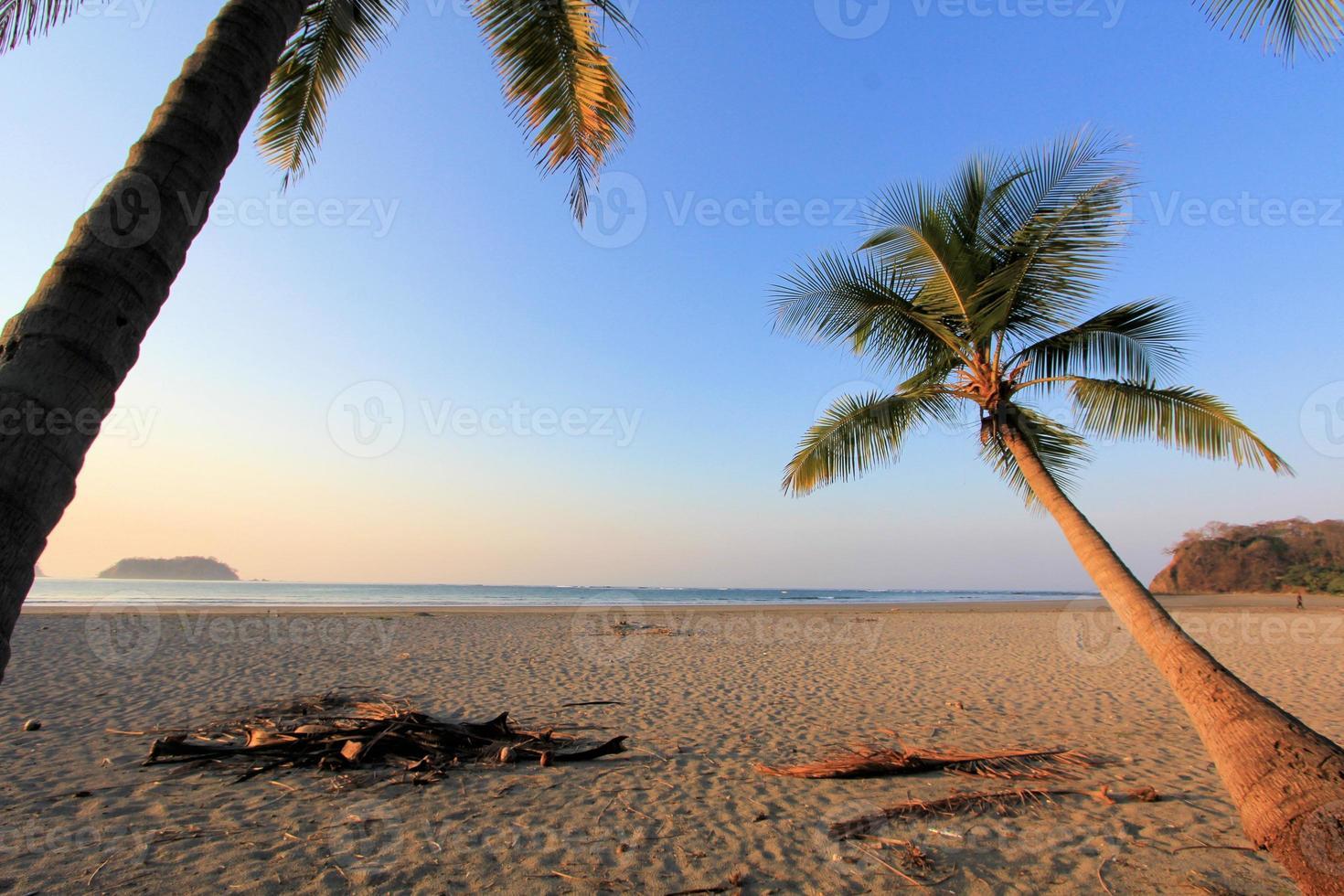 Bonita puesta de sol con árboles plam en la playa de samara, costa-rica foto