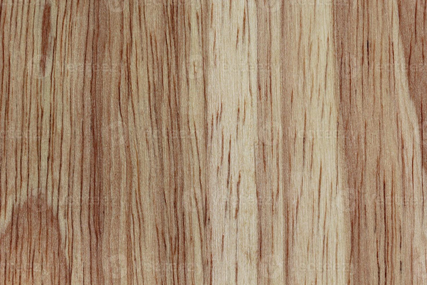 wood texture/wood texture background photo