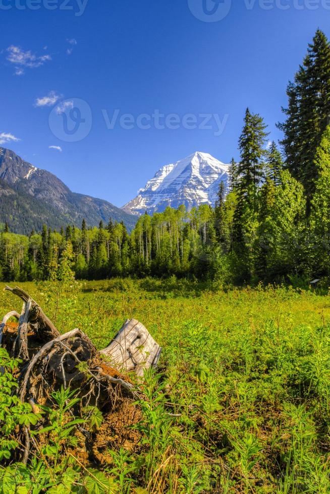 Mount Robson foto