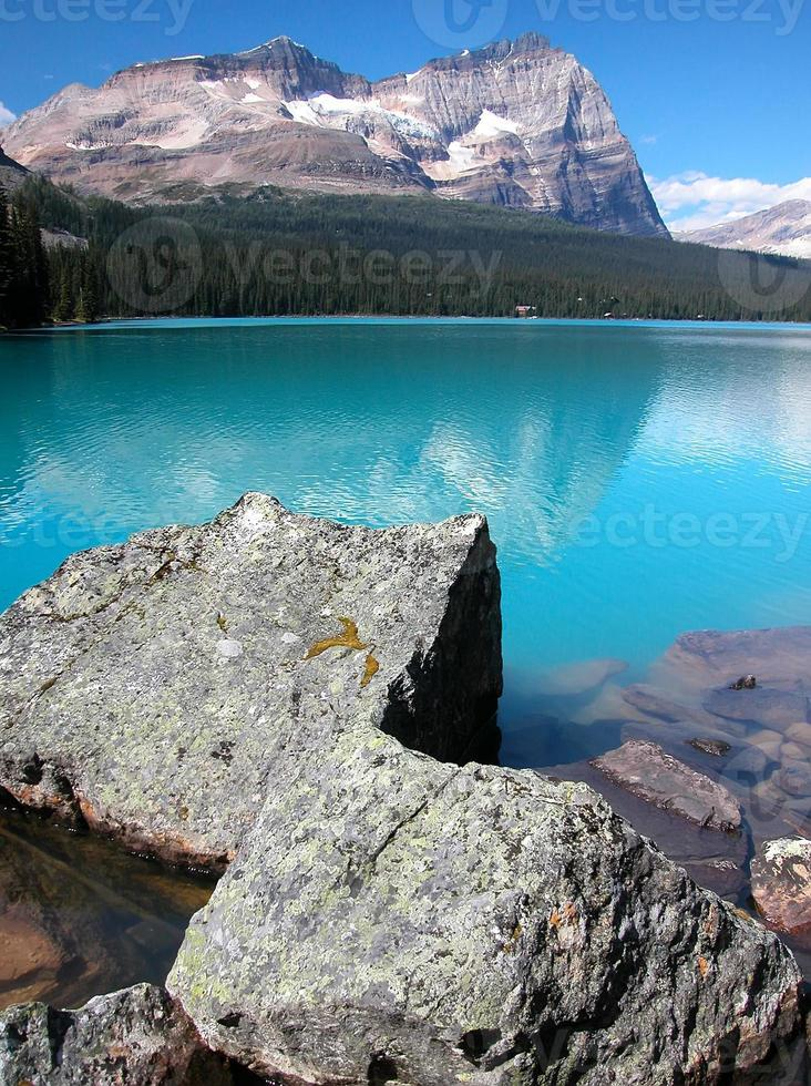 lago o'hara, parque nacional yoho, columbia británica, canadá foto