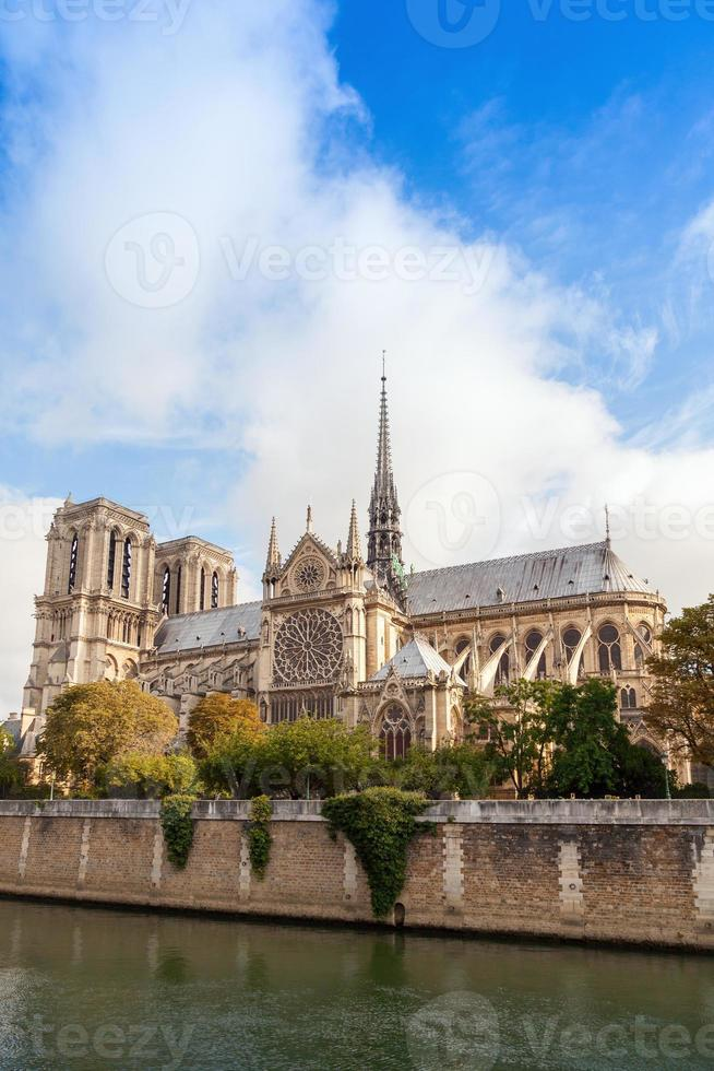 Notre Dame de Paris, vertical photo