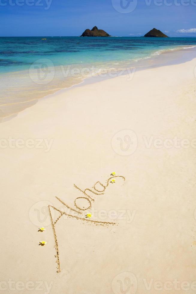 """aloha"" is written on a sandy beach photo"