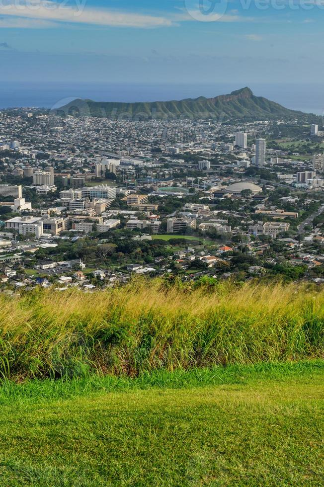Grassy field with Diamond Head in the background photo