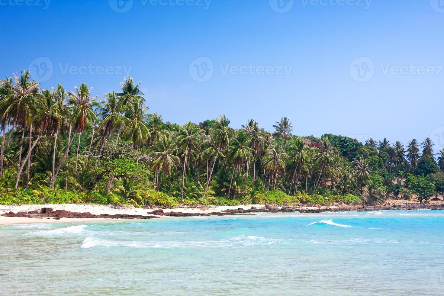 Tropical white sand beach with palm trees. Koh Kood, Thailand photo