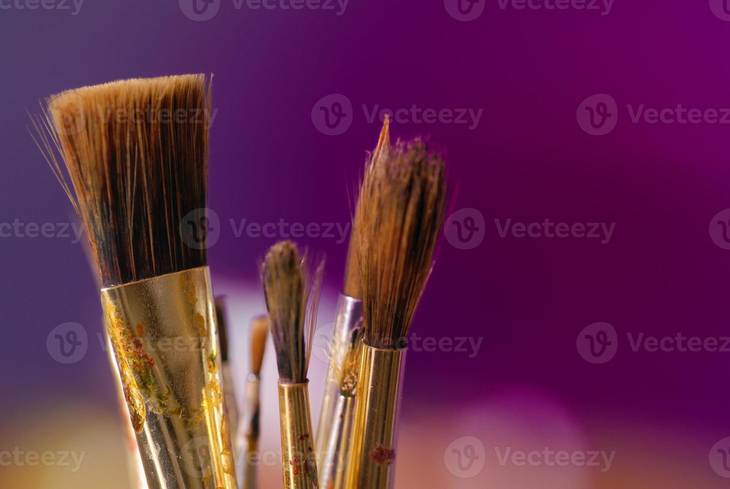 Paintbrush photo