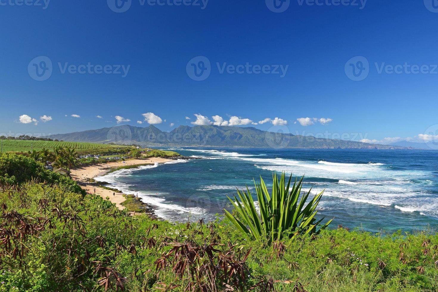 Playa de mandíbulas, Maui foto