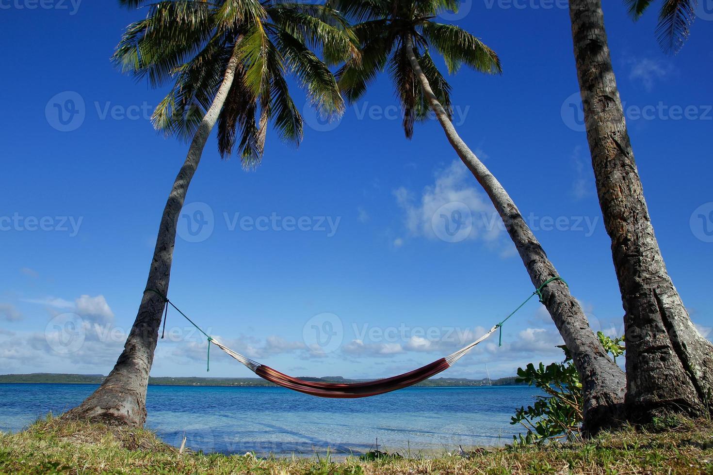 colorida hamaca entre palmeras, isla ofu, grupo vavau, a foto