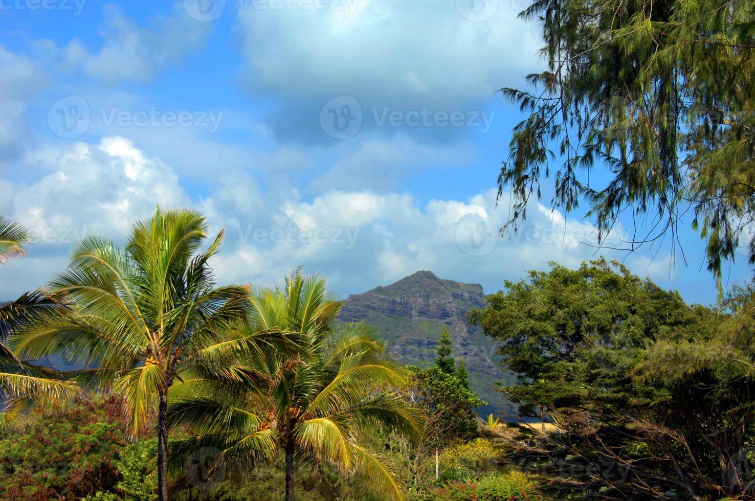 pico de montaña escarpado en kauai foto