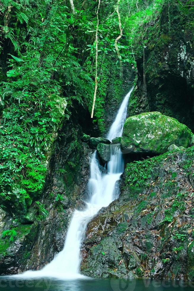 Nature Scenery photo