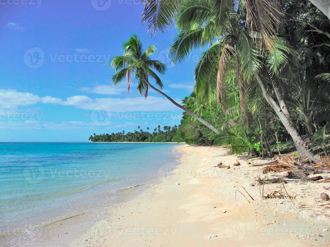 Tropical beach in Fiji islands photo