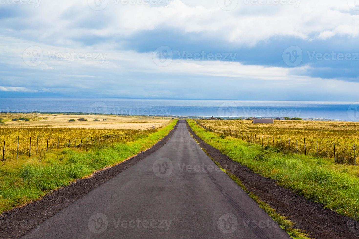 hermoso camino foto