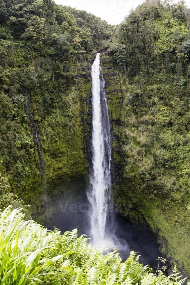 nice waterfall on hawaii photo