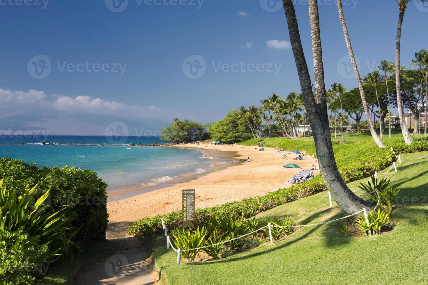 calçadão ao longo da praia de ulua, na costa sul de maui, havaí foto