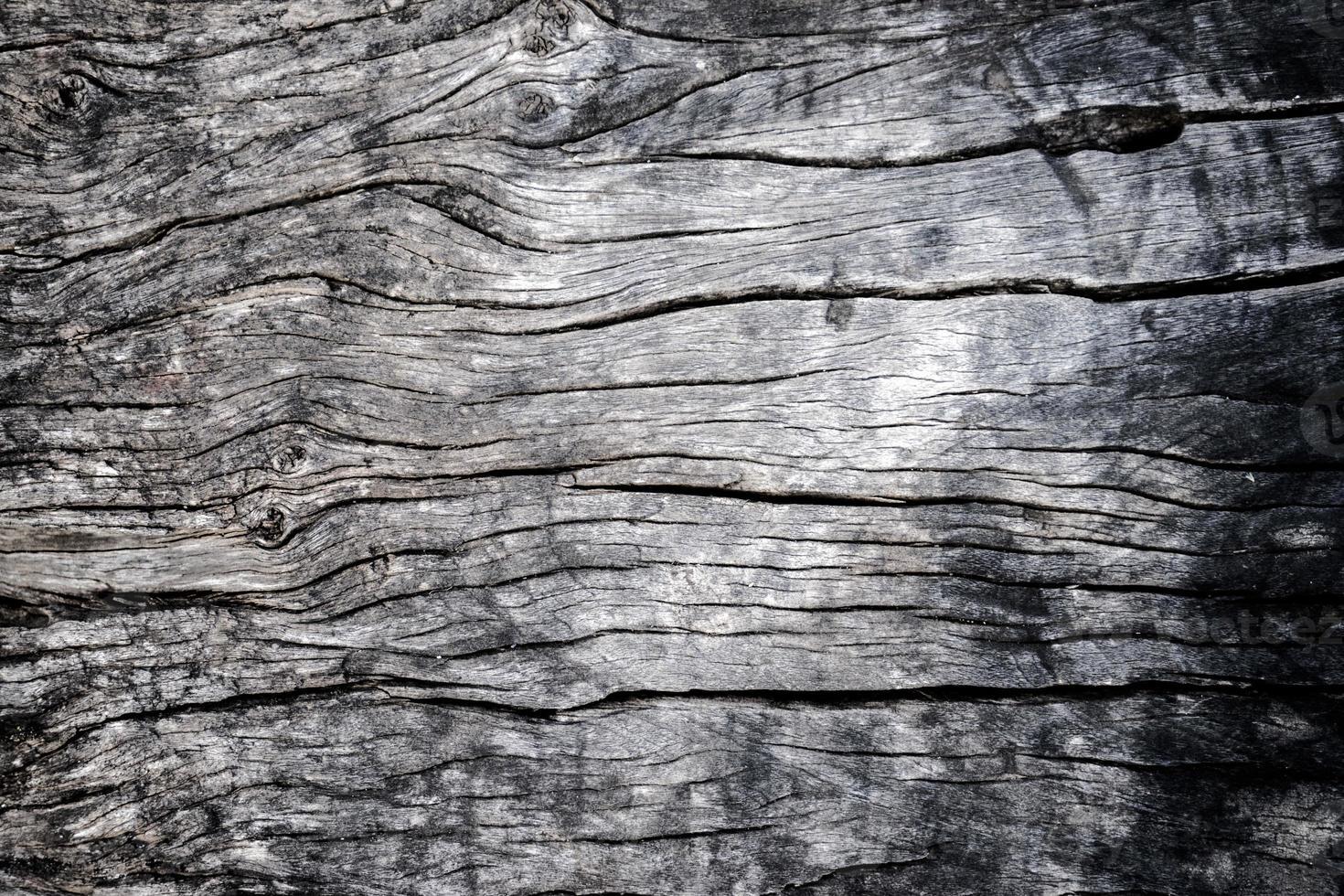 madera foto