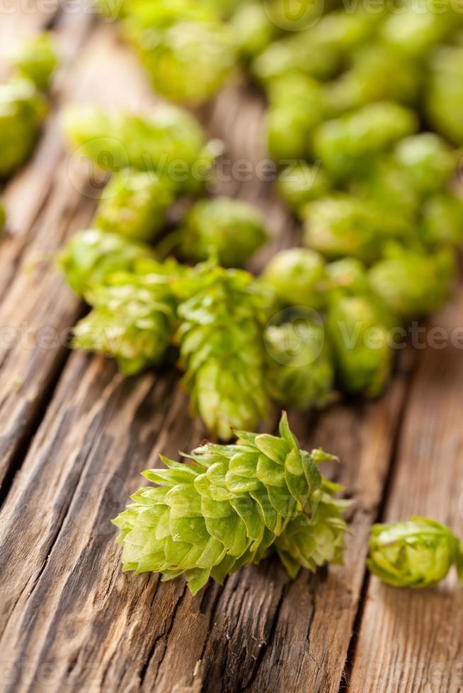Fresh green hops on wooden desk photo