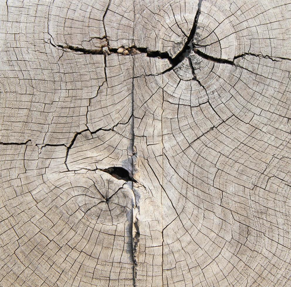textura de madera natural o fondo foto