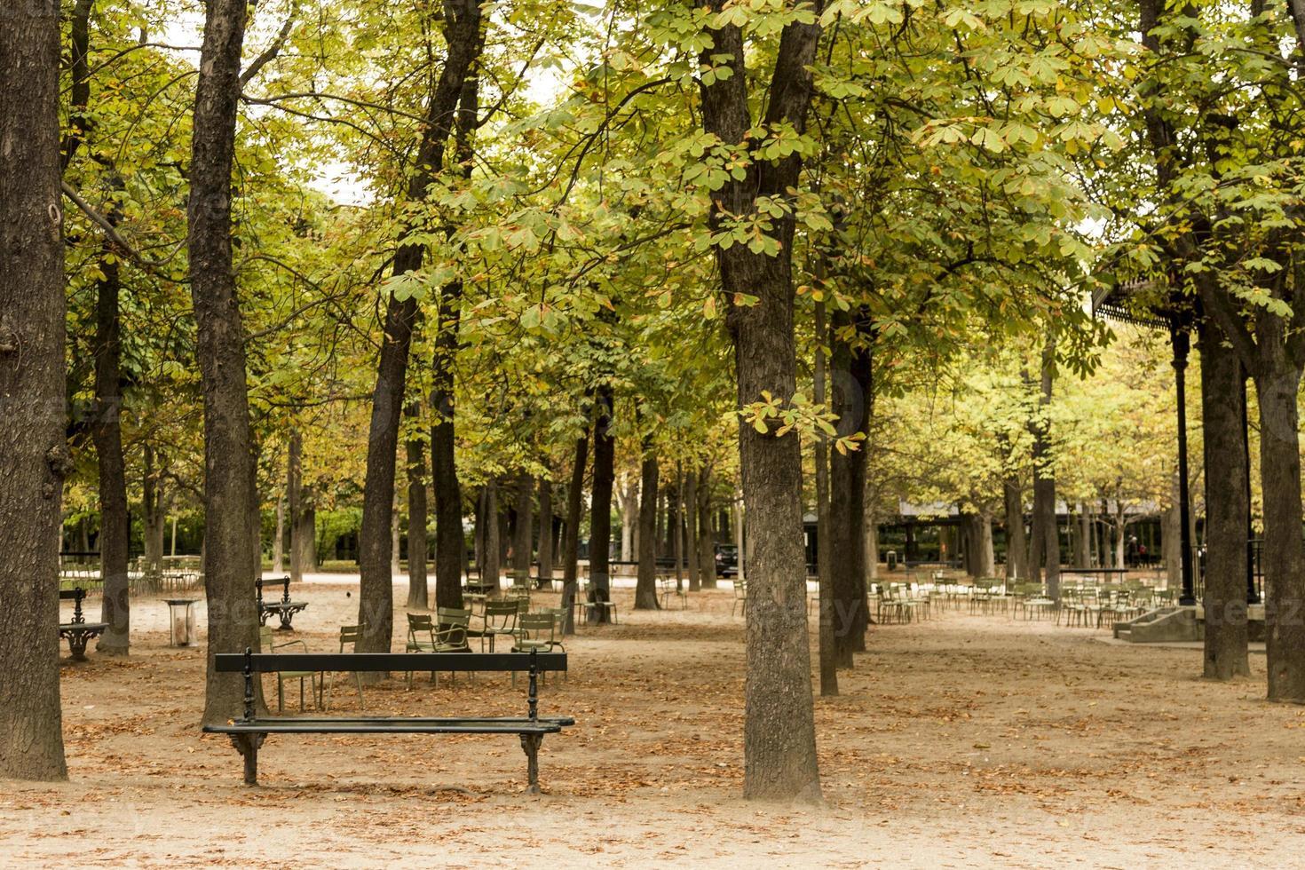 Park bench in Paris photo