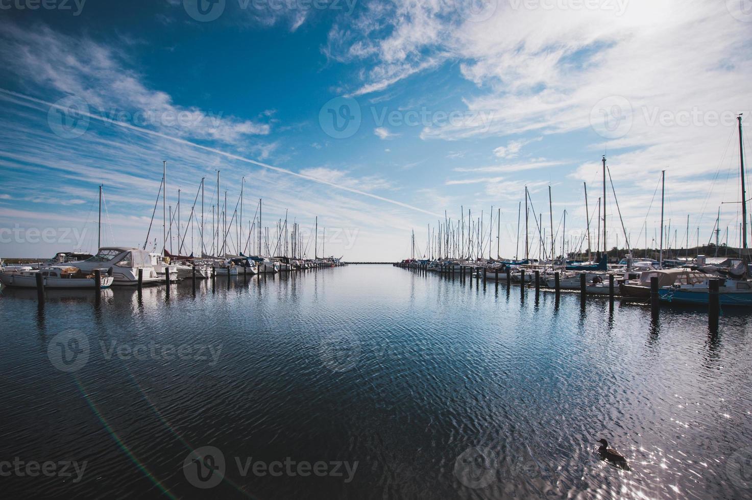 Numerosos yates en el puerto de Copenhague, Dinamarca foto