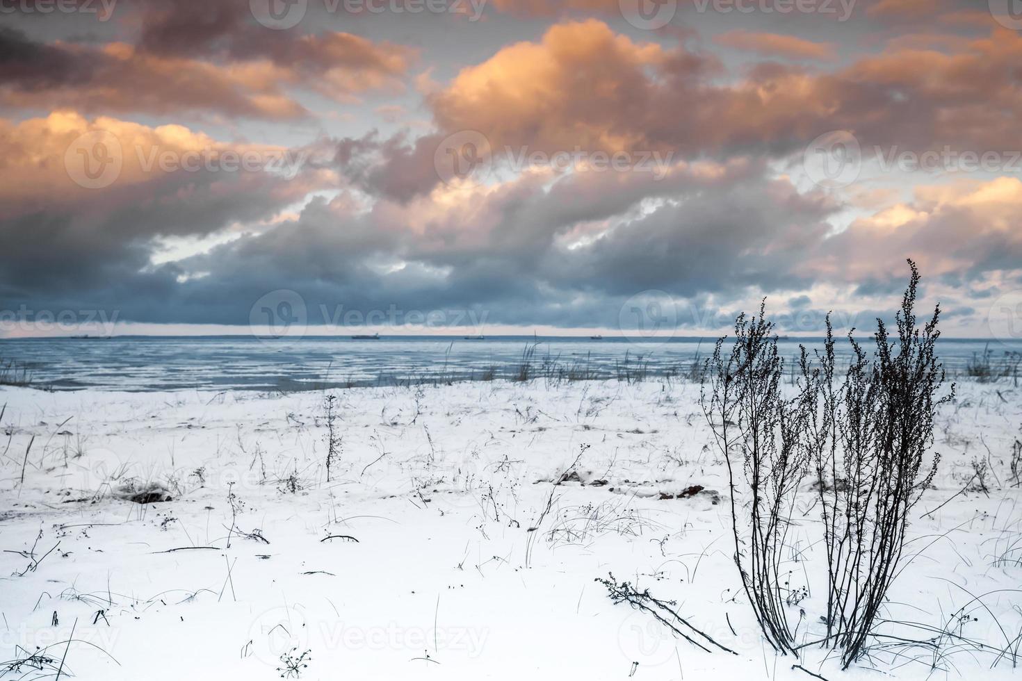 paisaje costero de invierno con hierba seca foto
