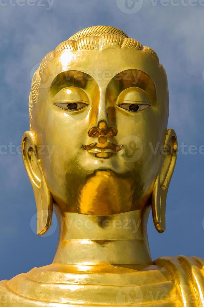 Buddha portrait. photo