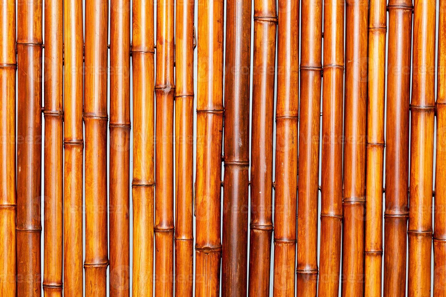 fondo de bambú foto