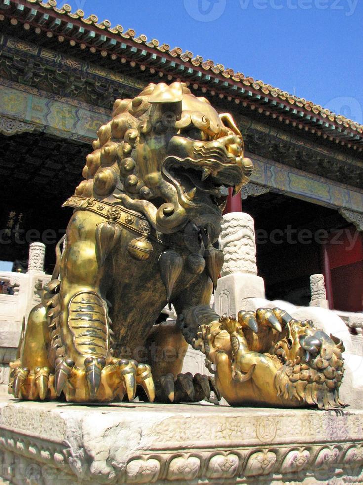 Gilded lion Statue, Forbidden City, Beijing photo