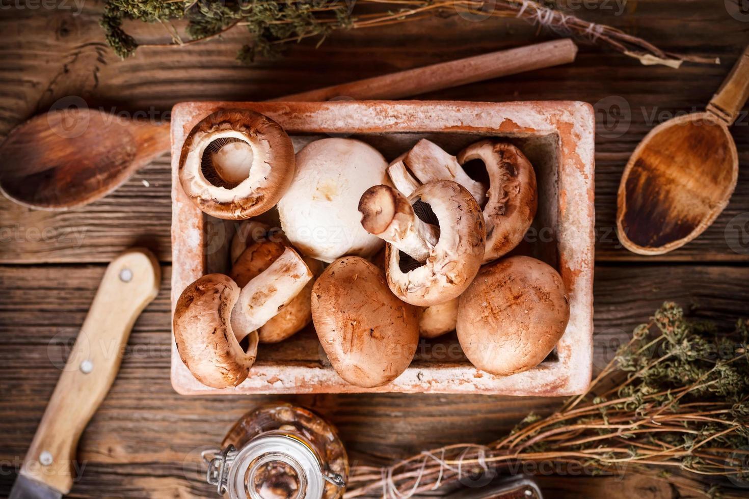 cogumelos marrons foto