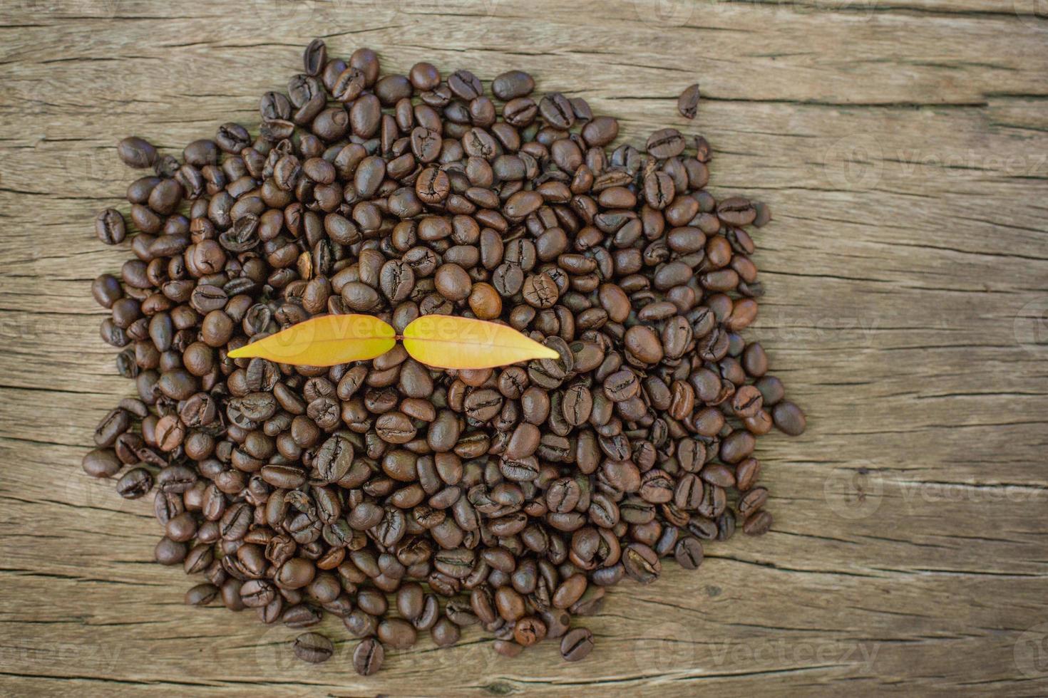 feijão de café em uma mesa de madeira e planta de café foto