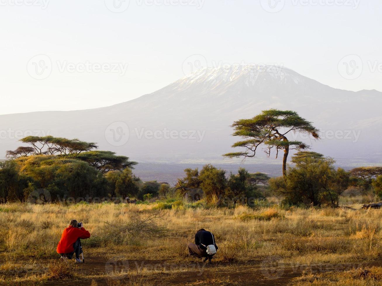 foto de kilimanjaro