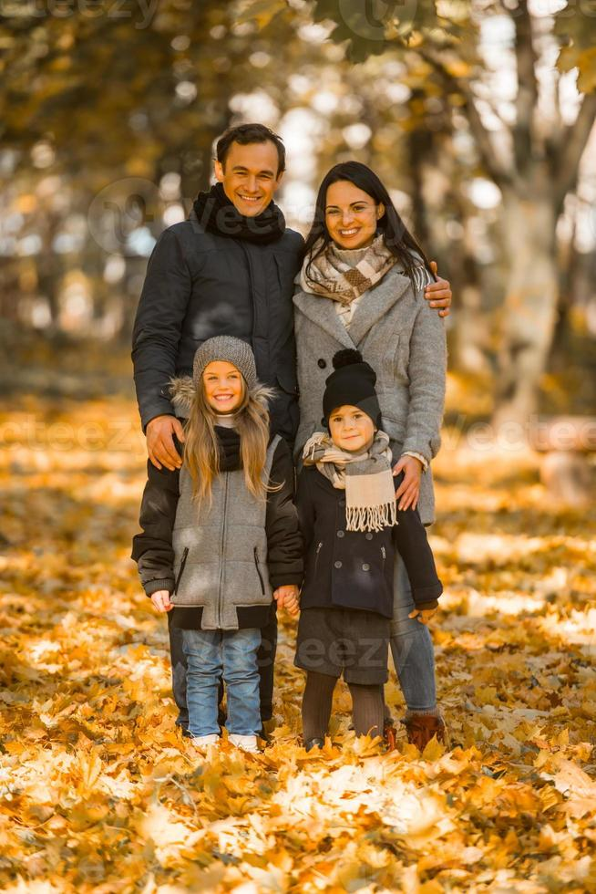 Walk autumn park photo
