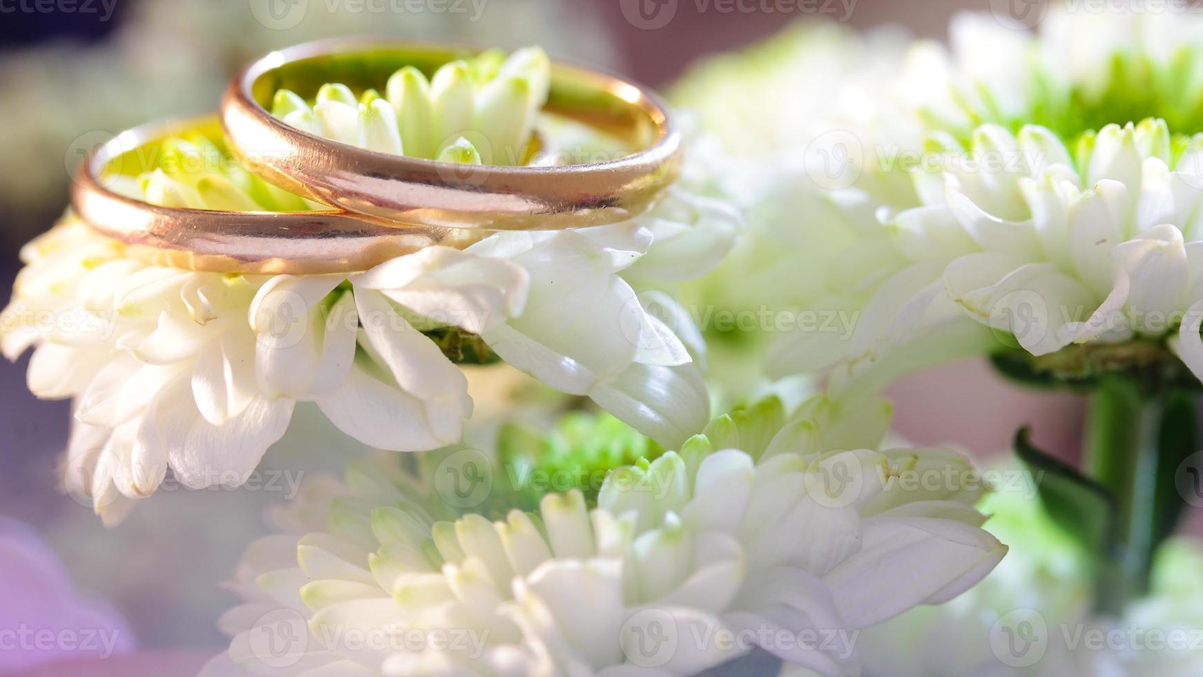 anéis de ouro em flor foto