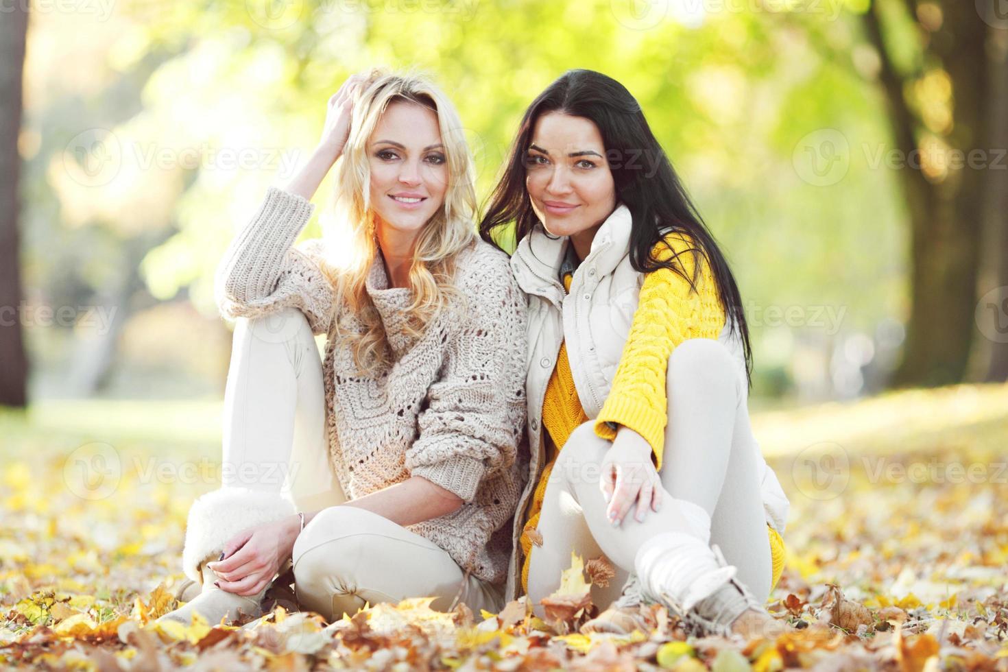 Friends in autumn park photo