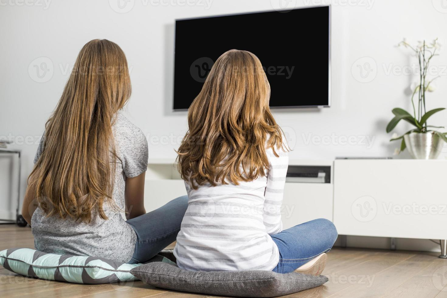 Rear view of siblings watching TV at home photo