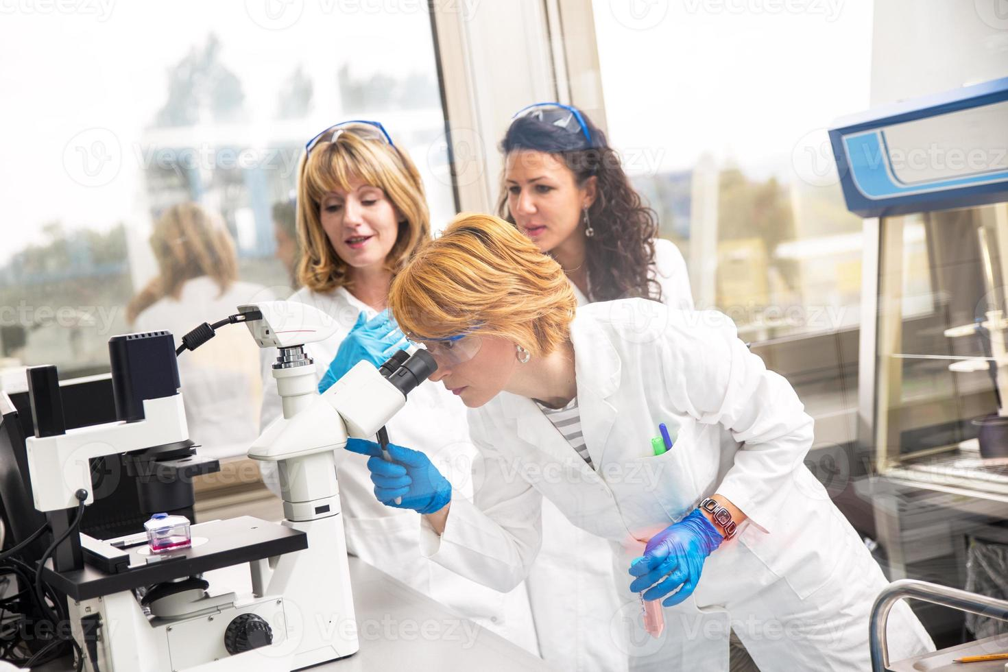 Real female scientists looking into a microscope photo