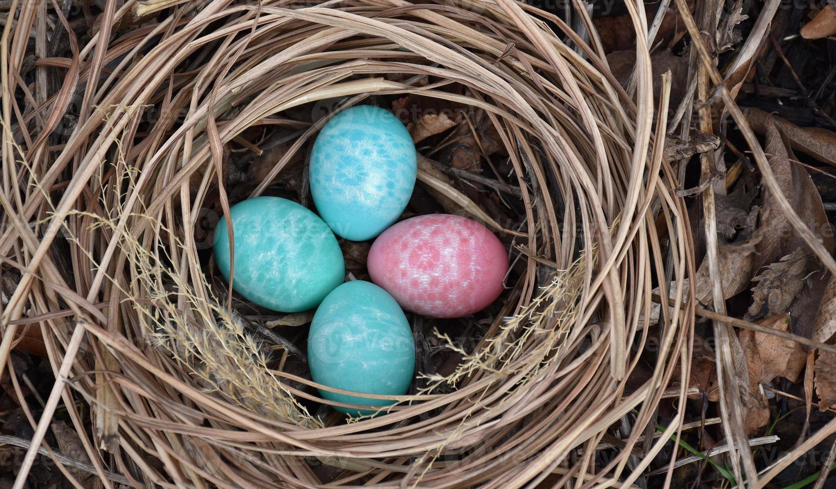 cuarteto de huevos de pascua foto