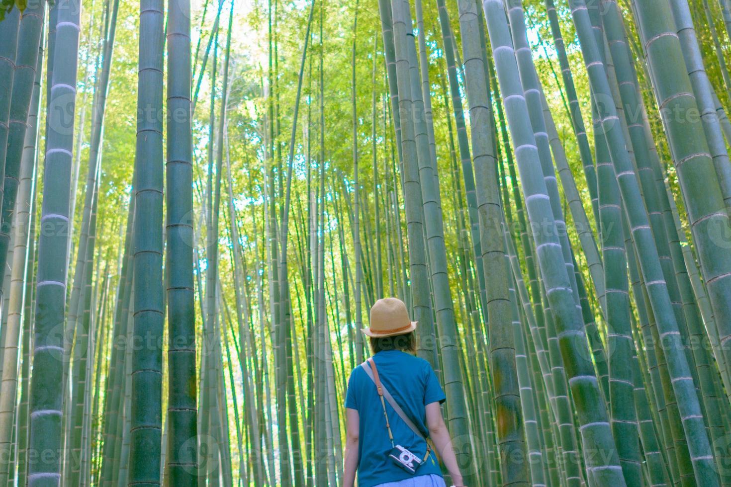joven explora en los bosques de bambú foto
