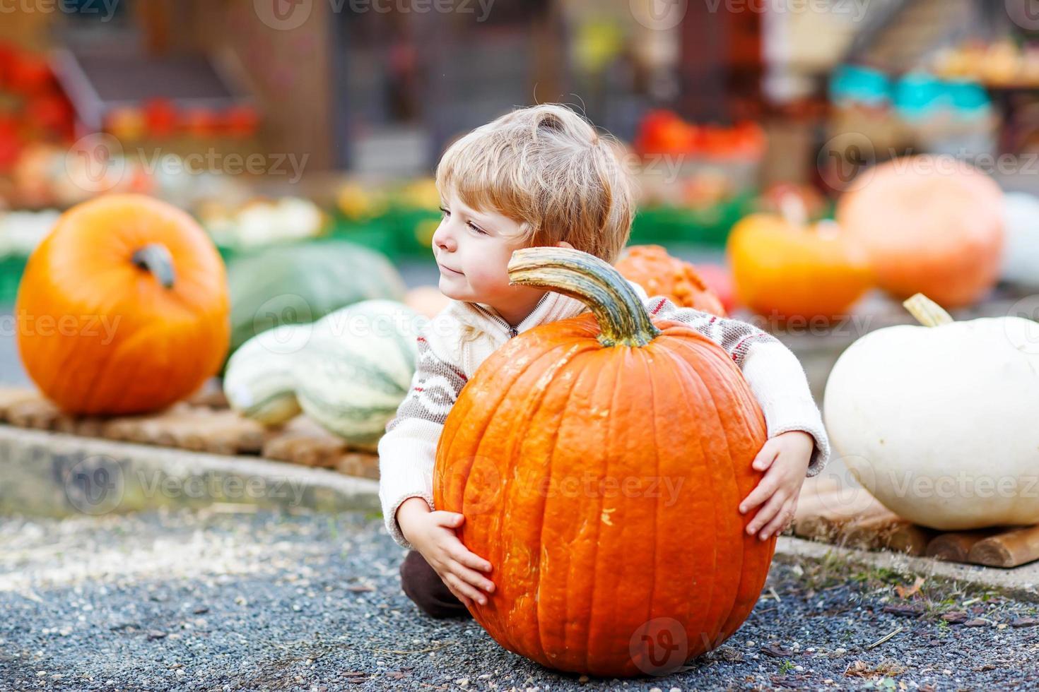Little cute kid boy sitting with huge pumpkin on halloween photo