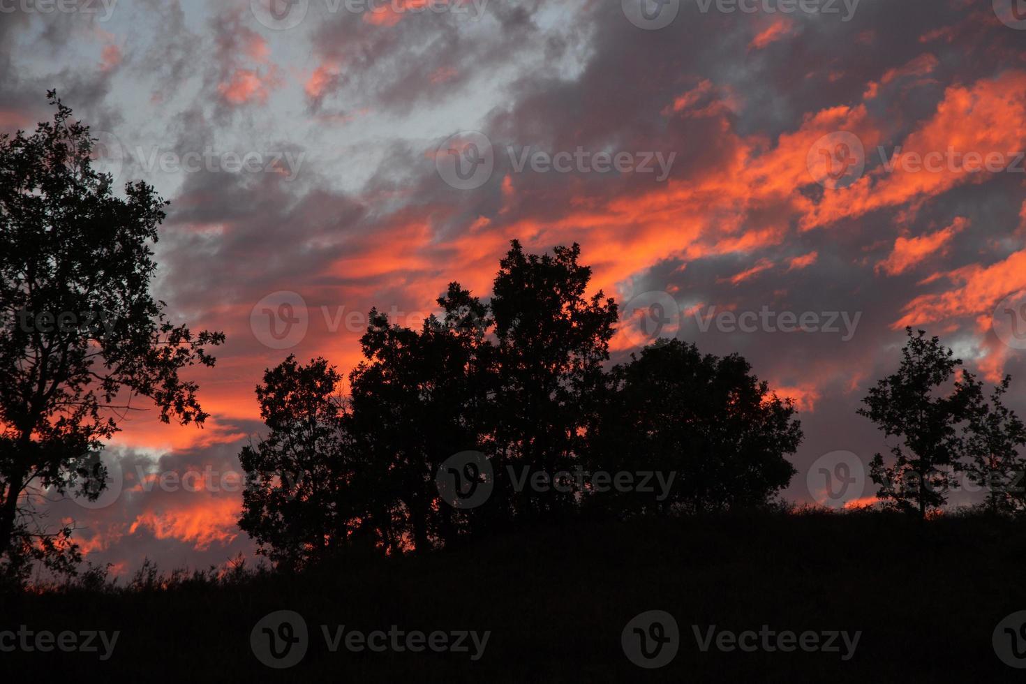 puesta de sol en el monte de los robles - puesta de sol foto