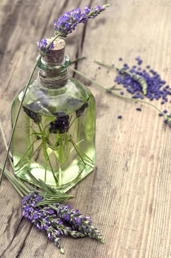 essential herbal lavender oil with fresh flowers photo