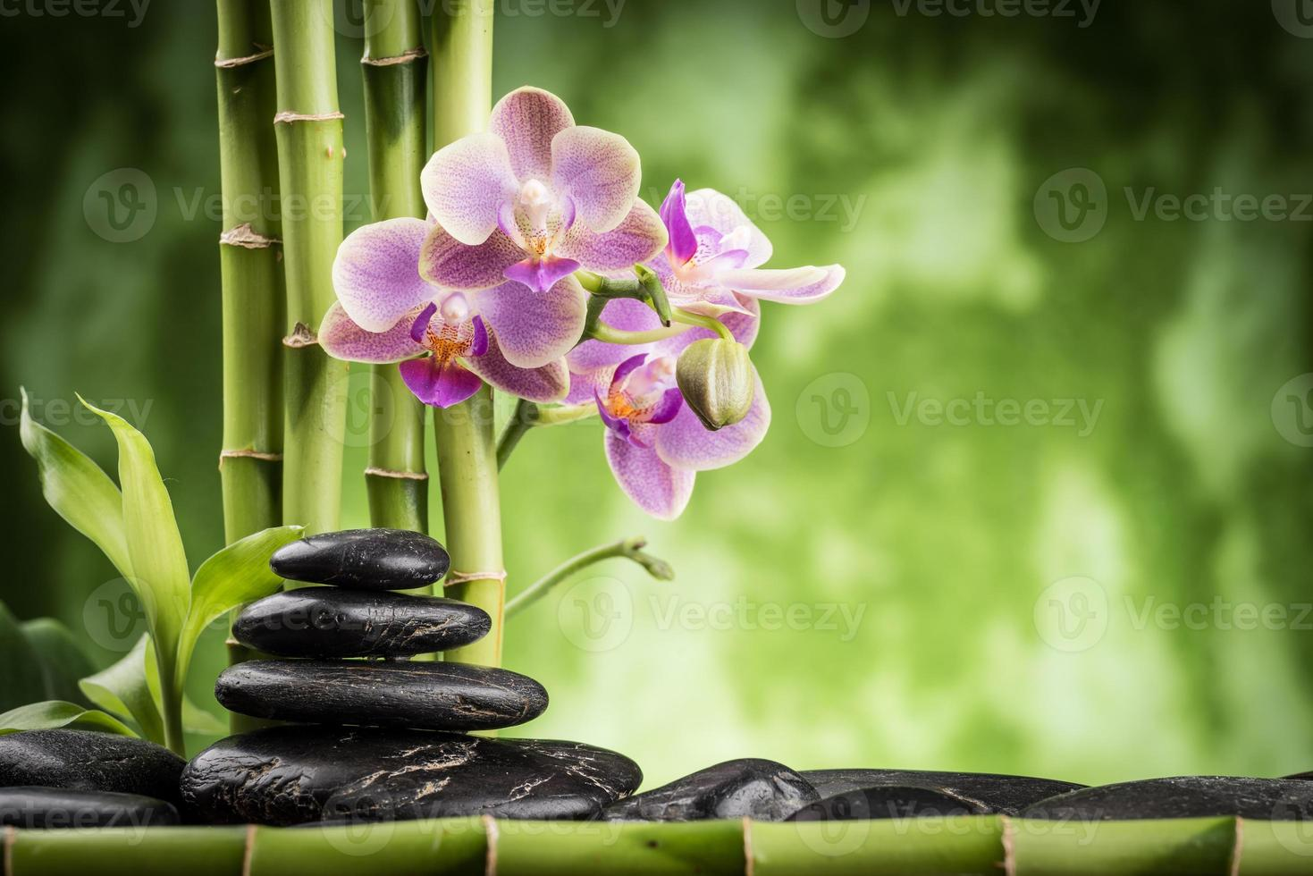Zen-like photo