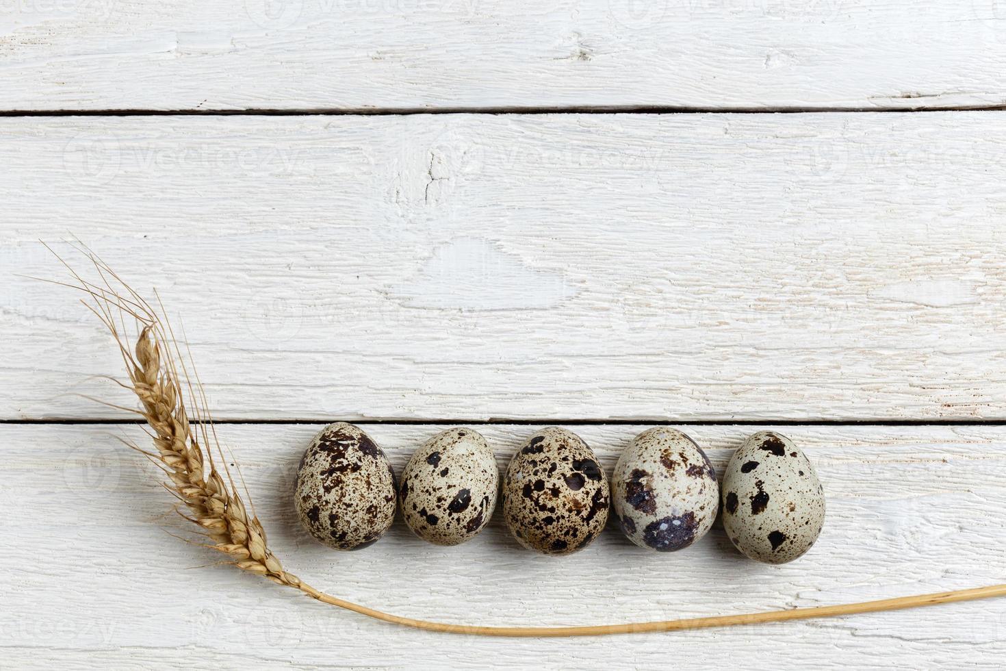 huevos de codorniz foto