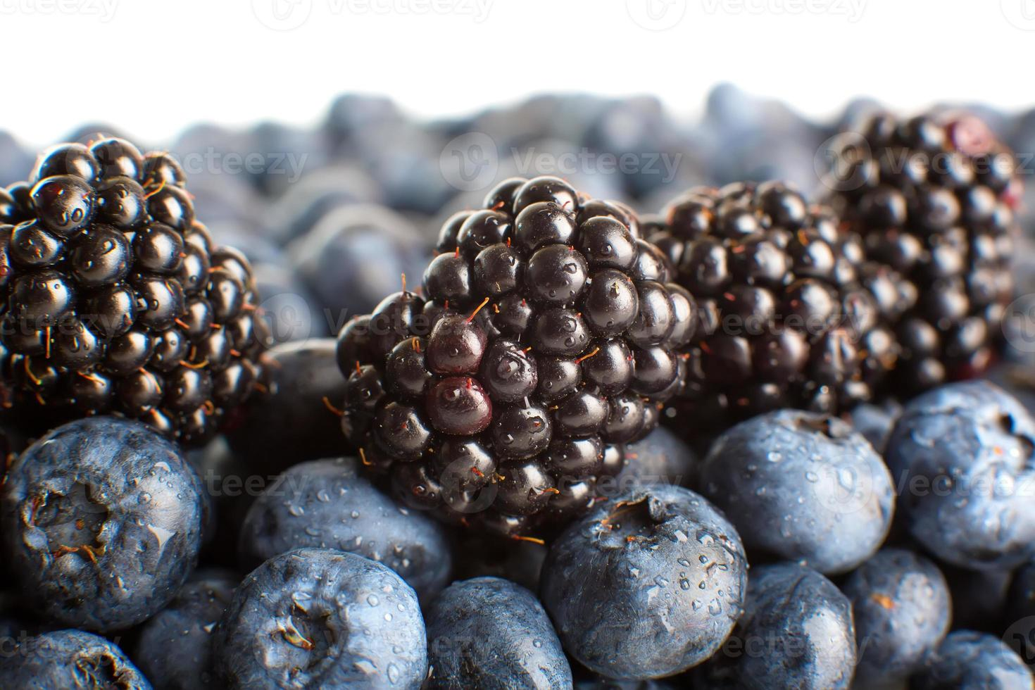 Freshly picked blueberries and blackberries close-up photo
