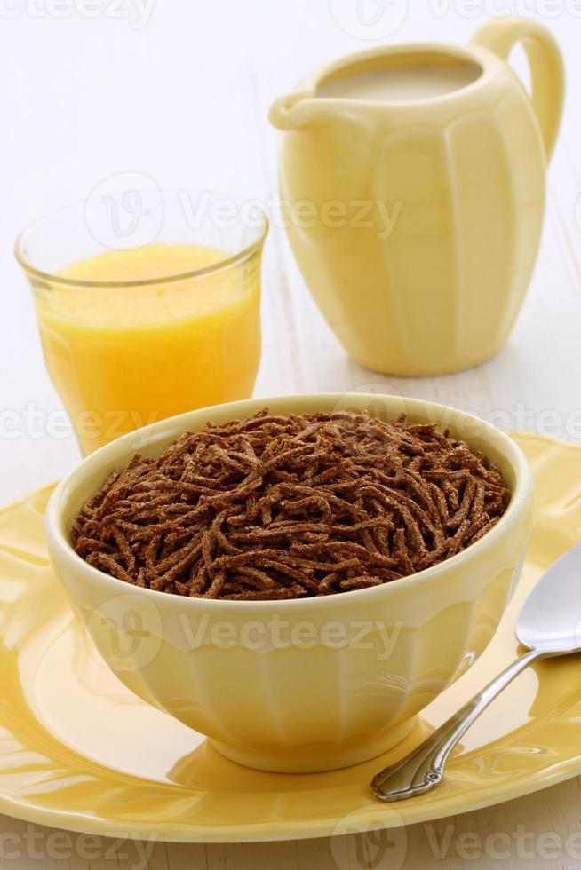 Delicious bran cereal breakfast photo