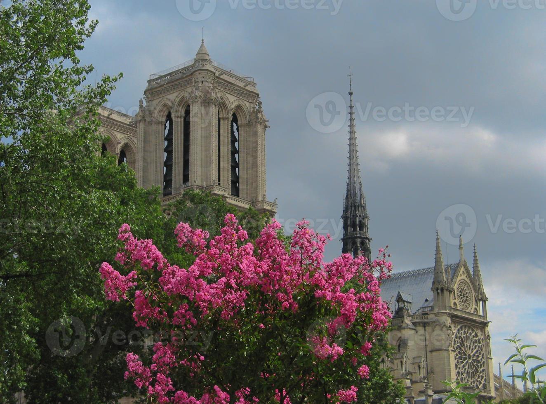 Notre Dame de París foto